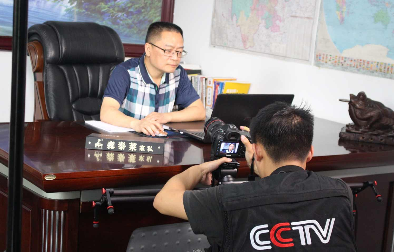 CCTV2《牛商论道》走进成都布艺沙发品牌森泰莱